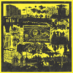 KALEIDOSCOPE - AFTER THE FUTURE LP