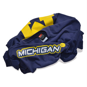 Used☆ NIKE TEAM MICHIGAN TEE