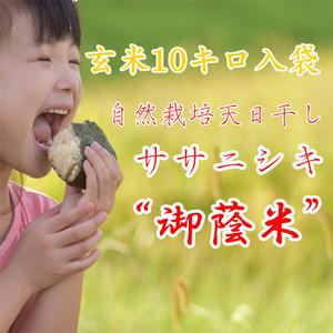 ササニシキ玄米10キロ(令和2年産:自然栽培米6年目)