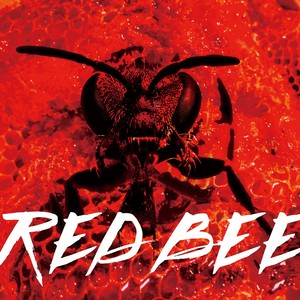 5ht single 【RED BEE】