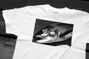 琵琶湖の魚Tシャツ♯2ビワマス White