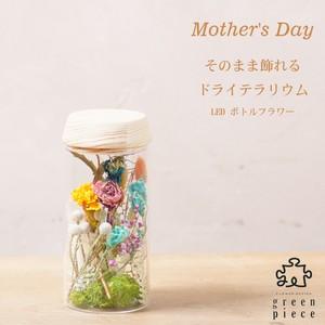 ~Thanks Mother's Day~ テラリウム ボトルフラワー Mサイズ
