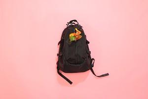 A-Bag pack