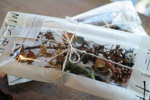 [お在庫2点]Xmas dried & preserved flower pac【dark】