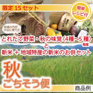 秋ごちそう便  限定15セット 送料込 ※10月12日発送(予定)