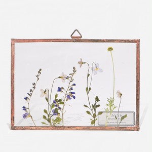 Botanical Frame S022 - Copper