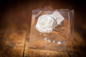 【花の誕生日プレゼント】プリザーブドフラワー/Jewel Ring-誕生日カラー-6月