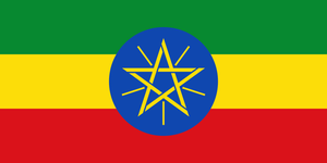 ETHIOPIA MOKHA DUMERSO  FLORAL (エチオピア モカ ドメルソ  フローラル)100g