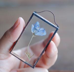 約3,5×5,5㌢『デルフィニウム ブルーパープル f』植物絵画:ドライフラワー/押し花