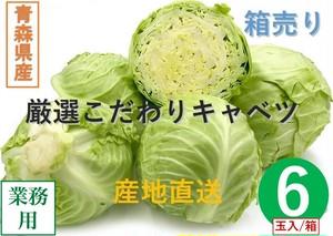 【新鮮野菜】キャベツ 1箱/6玉入り 青森県産【業務用・大量販売】