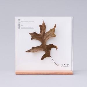 1126_ピンオークの葉