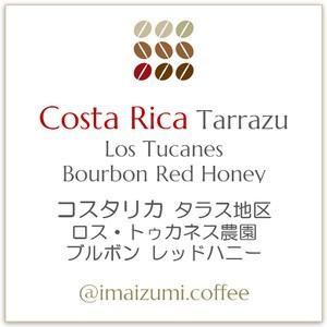 【送料込】コスタリカ ロス・トゥカネス農園 ブルボン レッドハニー - Costa Rica Los Tucanes Bourbon Red Honey - 300g(100g×3)