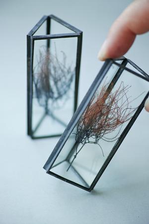 ◆抽選◆お在庫2点・△植物標本:プリザーブドフラワー〚スモークツリー パープル〛