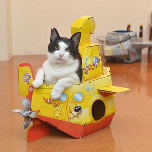 猫箱02<サブマリン>