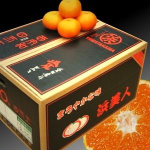 浜美人 10kg S 秀品(はまびじん)