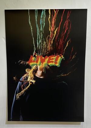 D.H. A3 Poster