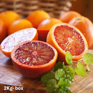 福岡県能古島産:芳醇な香りとジュシーな果汁が溢れる「ブラッドオレンジ」約2K*2月下旬からお届け
