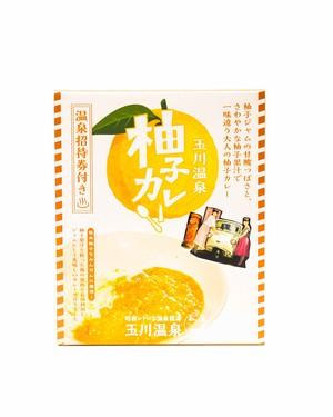 【温泉招待券付き】柚子カレー
