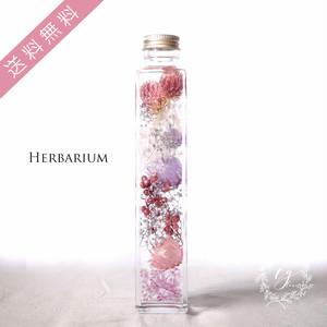 ハーバリウム hh-1909