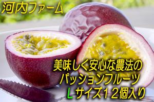 【セール中】【超有機栽培】種子島産パッションフルーツ【Lサイズ12個入り】