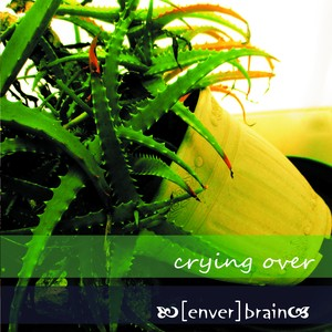 CD [enver]brain 「crying over」