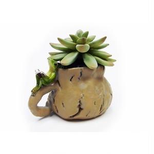 多肉植物と蛙大 本読 ミニ樹脂オブジェ フチカエル  EV14505A-1902