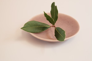 [shell@3 あずき色] 磁器 豆皿 直径8.5cm