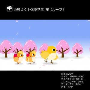 小鳥歩く1-3小学校_桜(ループ)