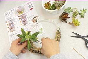 多肉植物で作るリース。手づくりキット(全国配送可)