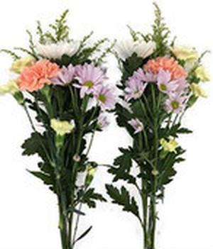 送料込み 【毎月30日に仏花が届く定期便】生花コース(年6回)549