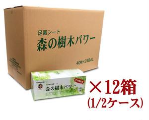 送料無料 足裏シート 森の樹木パワー 40枚入 超お買得12箱セット(25%OFF)