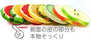 フルーツ コースター (Lサイズ)  食品サンプル 【送料無料】