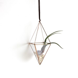 """hanging terrarium """"八面体"""" / copper [エアプランツ]"""