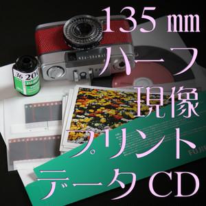 [現像+プリント+データ]:カラーネガ135mmフィルム【ハーフ】(カテゴリ:写真 プリント 焼き付け)
