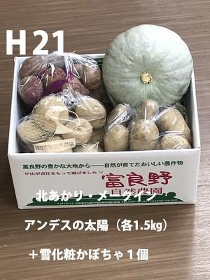 H21 北あかり・メークイン・アンデスの太陽( 各1.5kg)+雪化粧カボチャ1個