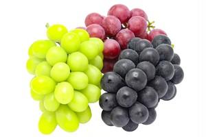 【山梨県・農家直送】甲州勝沼産 食べごろ 葡萄詰め合わせ