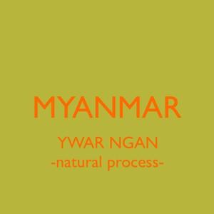 MYANMAR【natural】 -中浅煎り- 100g