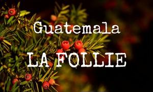 グアテマラ ラ・フォリー 150g