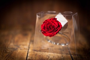 【花の誕生日プレゼント】プリザーブドフラワー/Jewel Ring-誕生日カラー-1月