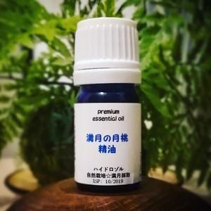 【予約】ストベリームーン採取 アロマウォーター(J)×2+月桃精油 特別セット
