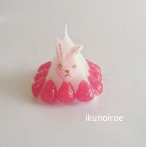 pyramid rabbit candle