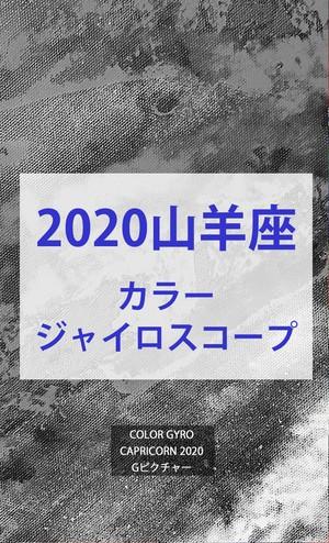 2020 山羊座(12/21-1/19)【カラージャイロスコープ】