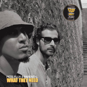 [LP] Pete Flux & Parental - What They Need