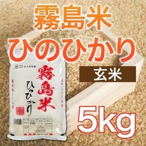 令和元年産 霧島米ヒノヒカリ 【玄米】 5kg ★送料無料!!(一部地域を除く)★