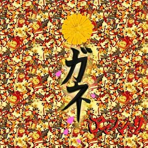 2nd Single「ガネ」B-TYPE