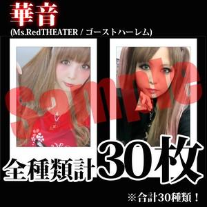 【チェキ・全種類計30枚】華音(Ms.RedTHEATER / ゴーストハーレム)