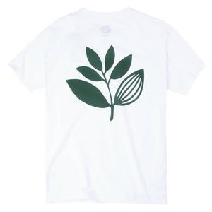 MAGENTA CLASSIC PLANT TEE  WHITE マゼンタ Tシャツ