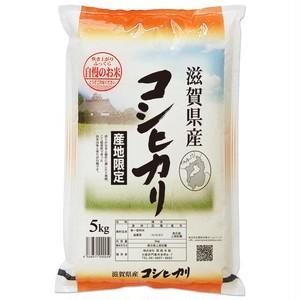 滋賀県 近江米 コシヒカリ 5kg 令和元年産 白米/玄米(離島は配送不可)