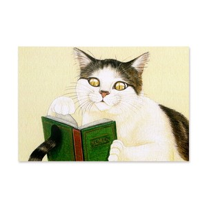 15.ねこの自主学習 ポストカード / The Bookworm Cat Postcard