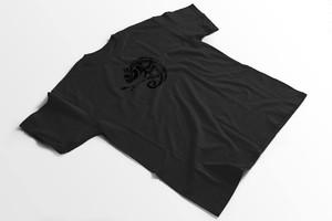 TeamZenkoカメレオンコットンTシャツ  Mサイズ ブラック×ブラック
